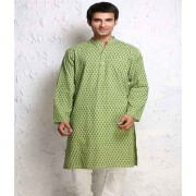 DI- Pista Green Block Print Pure Cotton Kurta  .